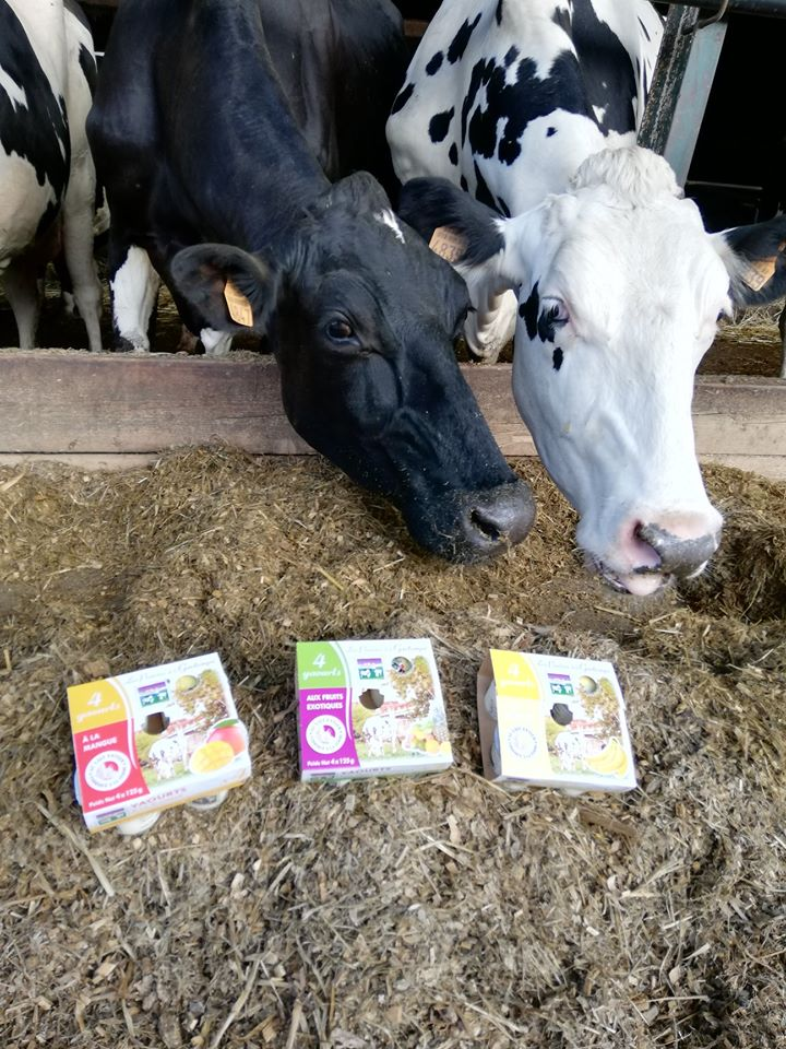 Produits laitiers de la ferme dans la Vienne