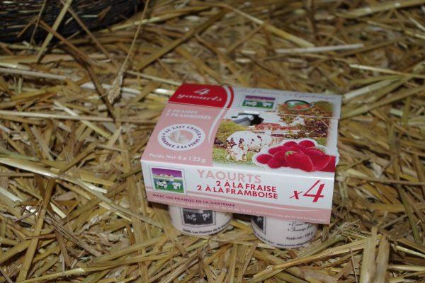 Yaourts au lait de vache Click and Collect